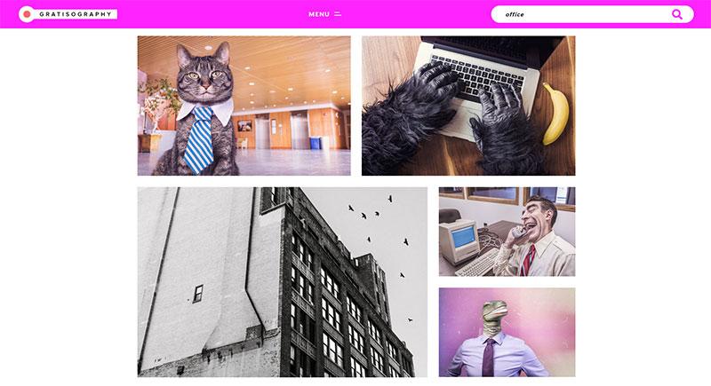 bancos de imagenes gratis Gratisography